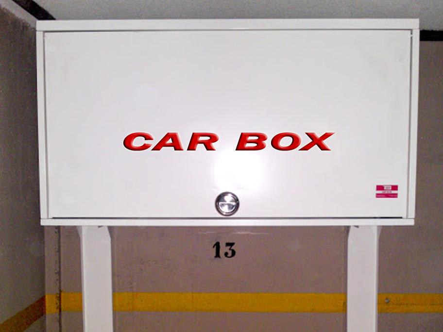 Car box armario trastero para garaje - Armarios para bicicletas ...